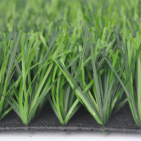Hot Sale Various Styles Lowes Sod Grass
