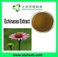 Manufacturer Supplier Polyphenols 0.5%-7%,Chicoric Acid 0.5%-5% Echinacea Extract Echinacea Purpurea P.E.