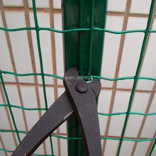 Widely Used best quality pvc coated exporting holland fence