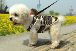 2015 Hot Sales Camouflage Dog Clothes/Suit for Dog Summer Wear Clothes/Pet Fashion Clothes