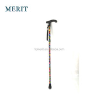 Collapsible Nordic Walking Sticks For Disabled