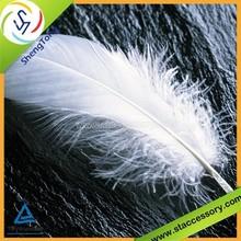 Hot sale wholesale duck feather