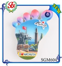 SGM604 Customized Full Colours blank epoxy magnet set, die cut magnet