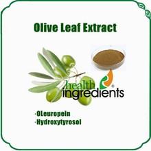 Natural and Pure bulk olive leaf extract powder oleuropein & hydroxytyrosol powder