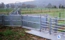 hot sale livestock racing products sheep yards