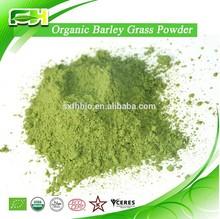 Hot Selling Health Drink Barley Grass Powder