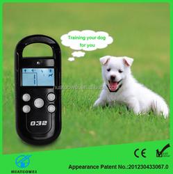 dog pet agility training best pet training product
