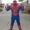 Hola muscle adult spiderman costume for sale