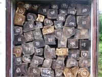 Diospyros insularis New Guinea ebony export to china