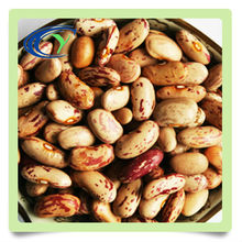 dry speckled kidney beans price on sale