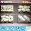 customized fiberglass dinosaur egg zigong