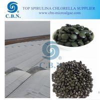 Top grade health food certified organic spirulina tablet