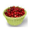 Plastic fruit basket,plastic storage basket, plastic bread basket