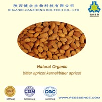 Natural Organic Bitter Apricot Kernels (bitter almond) best quality best price
