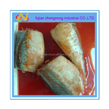 zhengnong 425g canned mackerel in tomato sauce(ZNMT0002)