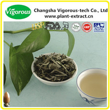 40%-90%Polyphenols instant tea powder brands white tea extract powder