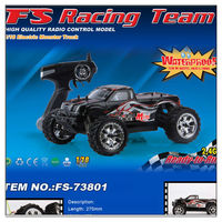 FS-73801 1/18 2.4G Waterprrof EP Monster Truck RC CAR