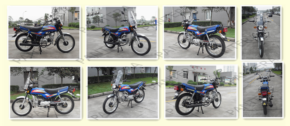 Durable Hot Sale Street Model Motorcycle 125cc China (1).png