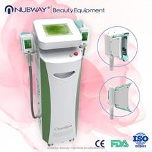 Cryolipolysis Machines Fat Freeze Loss Beauty Machine 2 Headpieces