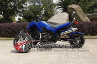 EEC Approved Gas Powered ATV 4 Stroke 250CC Trike ATV.