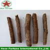 paulownai plant seeds/paulownia tree seeds/paulownia rootstock