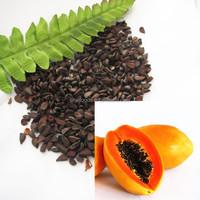 mu gu zhong zi papaya seeds papaya hybrid seeds