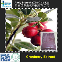 Hot Selling 15% Anthocyanidins Cranberry Extract