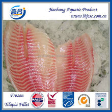 Frozen Tilapia fish Fillet 3-5OZ/fillet tilapia price