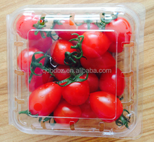 plastic blueberry packaging tray/box