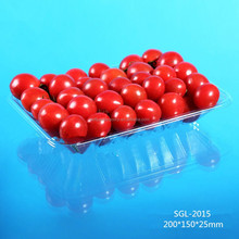 Special Shaped Disposable Plastic Tray for Vegetable or Fruit
