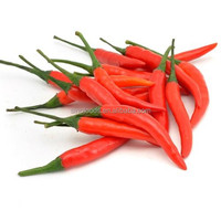 Chao tian jiao zhong zi pod pepper seeds for Dried Small Chilli seeds