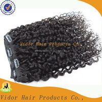 Cheap 100% Human Hair Afro Kinky Curly Clip In Hair Extensions For African American