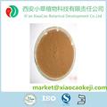 China de diente de león polvo de raíz de distribuidor