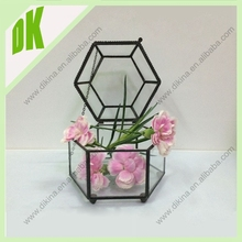 Perfect choice for wedding gift<< Jewelry Terrariums/ Glass Terrariums/ Lucky Terrariums