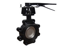 manual gear operated lugged high performance wafer type butterfly valve