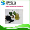 /product-gs/top-quality-sodium-magnesium-chlorophyllin-powder-in-herbal-extract-60251477657.html
