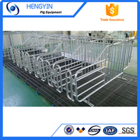 Hengyin adjustable gestation stall /gestation crate for pig farm