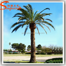 Top Selling Popular Outdoor Artificial Palm Tree For Sale