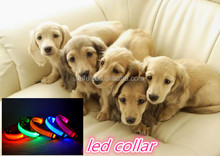 Hot pet products led electric dog collar made in Shenzhen