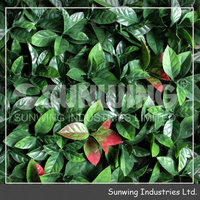 decorative hedges plastic fences landscaping fencing with test report