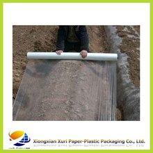 LDPE plastic film on roll