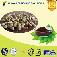 Solvent Extraction Type Powder Form Water Soluble Factory Price of Grape Seed Extract