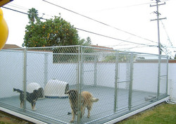 "Hot Dipped Galvanized portable 6"" high panels dog kennels (Alibaba supply)"