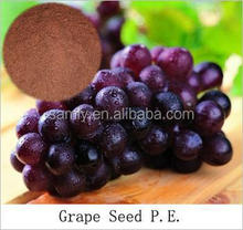 GMP certificated 95%,98% Grape Seed Extract with Proanthocyanidins