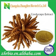 winter worm summer herb/Cordyceps Extract Powder 10%- 40% Polysaccharide
