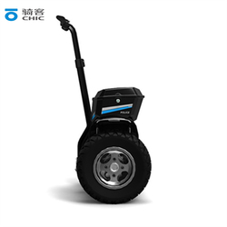 Cool Luxury Electric Scooter/1000W*2 Electric moped/2 wheel electric scooter