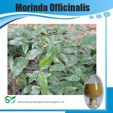 100% Natural Medicinal Indian Mulberry Root Extract/Radix Morindae Officinalis