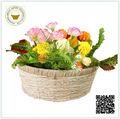 Atacado popular natrue cor rodada milho home decor floral cesta