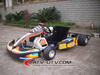 CE Approved Cool Gas Powered Go Kart Racing 200CC Go Kart