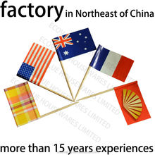 Birthday Party , Cocktail Flag Picks, Flag Toothpicks